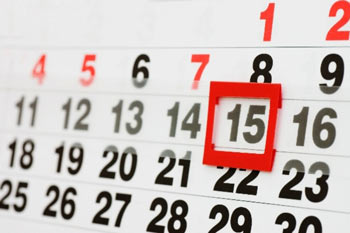 сроки проверки деклараций